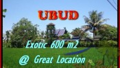 FOR SALE Magnificent PROPERTY 600 m2 LAND IN UBUD BALI TJUB437