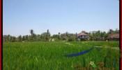 Exotic Sentral Ubud BALI LAND FOR SALE TJUB437