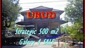 Magnificent 500 m2 LAND FOR SALE IN UBUD BALI TJUB438