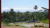 Beautiful 8.000 m2 LAND IN UBUD BALI FOR SALE TJUB441