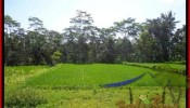 FOR SALE Exotic 2.885 m2 LAND IN UBUD TJUB442