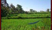 Magnificent 2.885 m2 LAND FOR SALE IN UBUD BALI TJUB442
