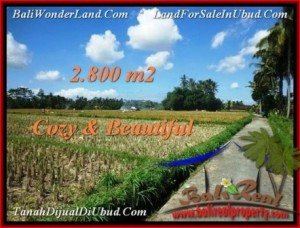 Exotic PROPERTY 2,800 m2 LAND SALE IN UBUD BALI TJUB498