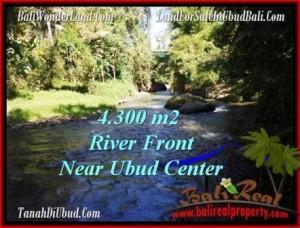Affordable LAND IN Sentral Ubud BALI FOR SALE TJUB499