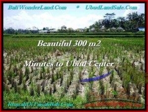 Beautiful PROPERTY 300 m2 LAND FOR SALE IN Sentral Ubud TJUB500