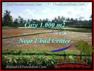 Affordable LAND SALE IN Sentral Ubud BALI TJUB501
