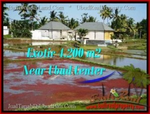 LAND FOR SALE IN Sentral Ubud BALI TJUB502