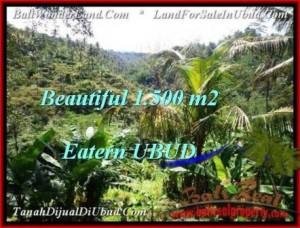 FOR SALE Exotic LAND IN Ubud Tegalalang BALI TJUB503