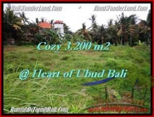 Affordable LAND IN Sentral Ubud BALI FOR SALE TJUB510