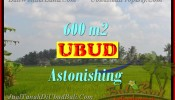Magnificent PROPERTY UBUD LAND FOR SALE TJUB427