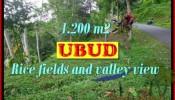 Magnificent UBUD BALI 1,200 m2 LAND FOR SALE TJUB422