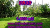 FOR SALE Beautiful PROPERTY LAND IN UBUD TJUB416