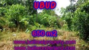 FOR SALE Affordable PROPERTY 650 m2 LAND IN UBUD BALI TJUB417