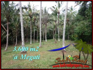 FOR SALE Magnificent PROPERTY 3,600 m2 LAND IN TABANAN BALI TJTB211