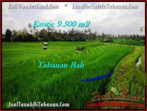 FOR SALE Magnificent PROPERTY 9,500 m2 LAND IN TABANAN BALI TJTB210