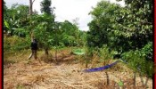 Beautiful PROPERTY Sentral Ubud 650 m2 LAND FOR SALE TJUB417