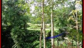 Sentral Ubud BALI LAND FOR SALE TJUB417