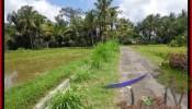 FOR SALE Affordable PROPERTY 2,600 m2 LAND IN UBUD BALI TJUB421