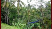 Magnificent PROPERTY 2,600 m2 LAND IN Ubud Tegalalang FOR SALE TJUB421