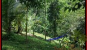 Exotic PROPERTY 1,200 m2 LAND FOR SALE IN Ubud Tegalalang TJUB422