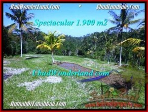 Exotic Ubud Tegalalang BALI LAND FOR SALE TJUB505