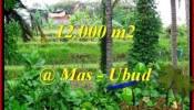 Affordable 12,000 m2 LAND IN UBUD BALI FOR SALE TJUB492