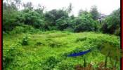 Exotic PROPERTY 12,000 m2 LAND IN Sentral Ubud FOR SALE TJUB492