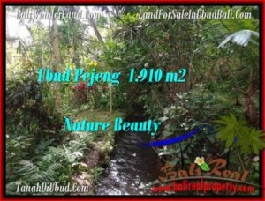 Affordable LAND IN Ubud Pejeng BALI FOR SALE TJUB504