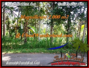 2,000 m2 LAND SALE IN Ubud Payangan TJUB506