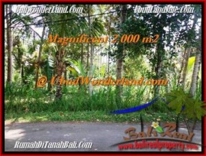 Magnificent LAND SALE IN Ubud Payangan BALI TJUB506