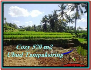 570 m2 LAND SALE IN UBUD TJUB511