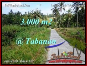 Affordable 3,000 m2 LAND SALE IN TABANAN TJTB205
