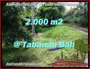 FOR SALE Exotic 2,000 m2 LAND IN TABANAN TJTB206