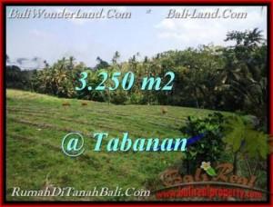 Beautiful 3,250 m2 LAND IN TABANAN BALI FOR SALE TJTB208