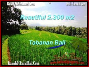 Exotic PROPERTY 2,300 m2 LAND SALE IN TABANAN BALI TJTB209