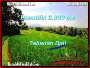 Exotic PROPERTY 2,300 m2 LAND SALE IN TABANAN BALI TJTB209