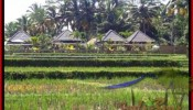Affordable PROPERTY UBUD LAND FOR SALE TJUB500