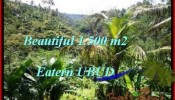 Magnificent LAND FOR SALE IN UBUD TJUB503