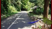Beautiful LAND IN UBUD FOR SALE TJUB503