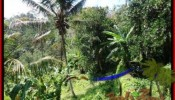 Affordable PROPERTY UBUD LAND FOR SALE TJUB503