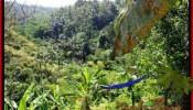 Beautiful PROPERTY LAND FOR SALE IN UBUD BALI TJUB503