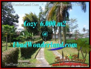 Exotic Sentral Ubud BALI LAND FOR SALE TJUB507