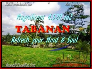 Affordable LAND IN Tabanan Selemadeg BALI FOR SALE TJTB154