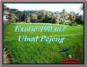 FOR SALE Affordable 490 m2 LAND IN UBUD TJUB512