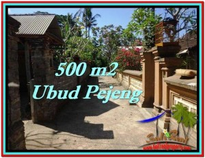Beautiful UBUD BALI 500 m2 LAND FOR SALE TJUB515