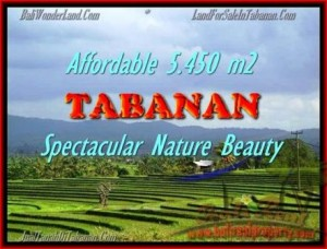 LAND FOR SALE IN Tabanan Selemadeg BALI TJTB152