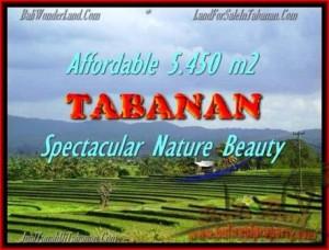 LAND FOR SALE IN Tabanan Selemadeg BALI TJTB152