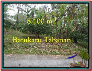 Magnificent PROPERTY LAND IN TABANAN FOR SALE TJTB212
