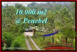 10,000 m2 LAND SALE IN  TABANAN TJTB214