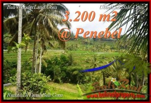 Exotic 3,200 m2 LAND FOR SALE IN TABANAN BALI TJTB216